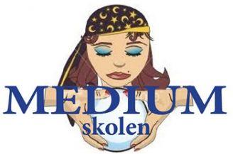 logo_medium_skolen1.jpg